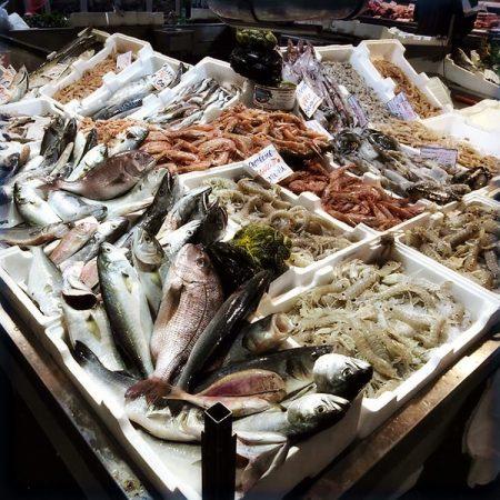 Fra fiskemarkedet i Civitavecchia – Cappuccini, Tolfa, Italia